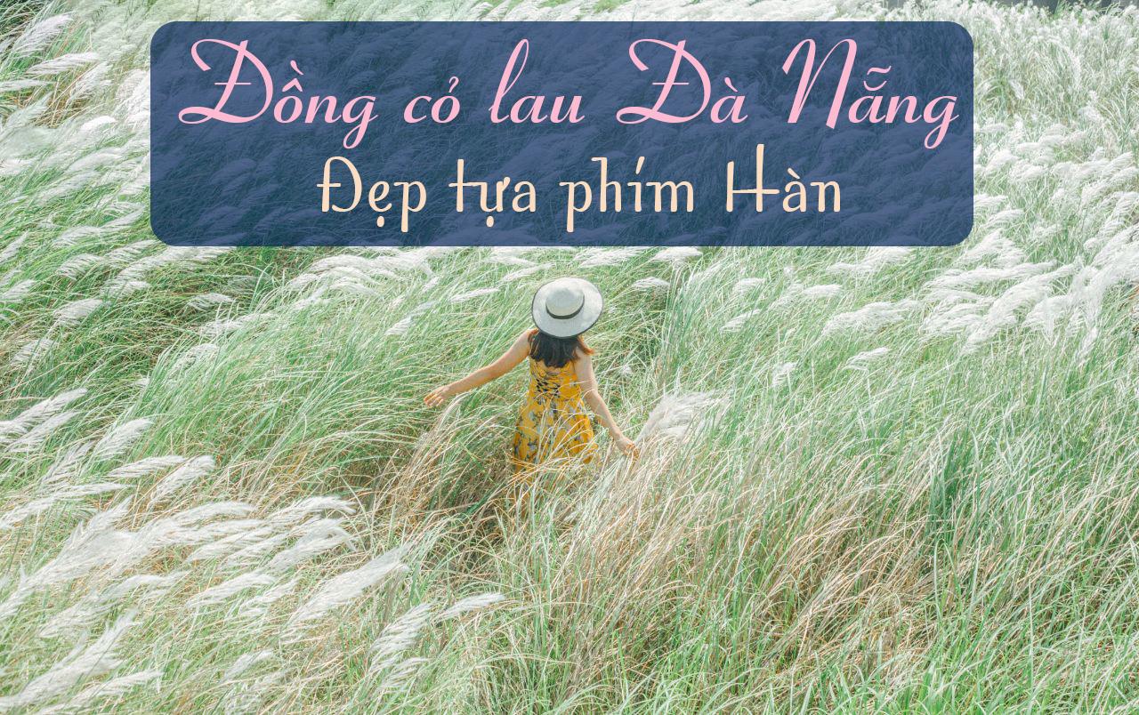 Check  in đồng cỏ lau đẹp tựa phim Hàn tại Đà Nẵng