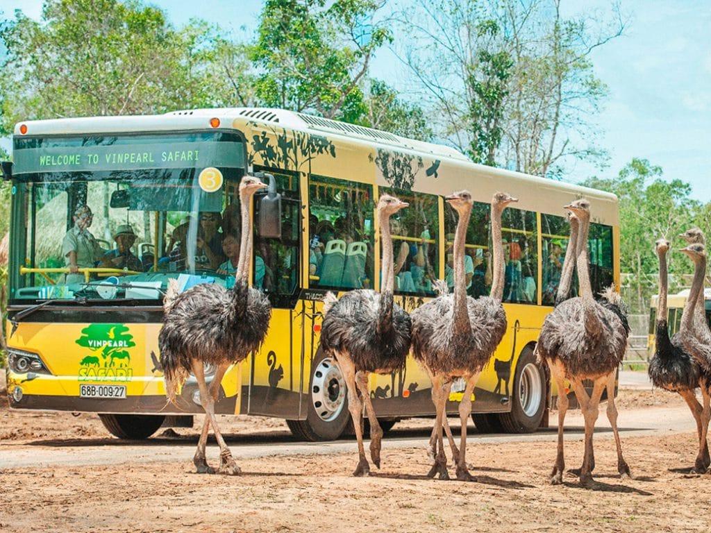 Vinpearl Safari Phú Quốc, Phú Quốc